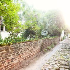 Dear #Charleston, The road less traveled looks good on you. xo, #PlantersInn #travel