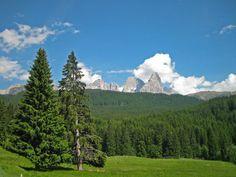 """""""Parco Naturale di Paneveggio""""  Trentino  http://www.visittrentino.it/it/cosa_fare/da_vedere/dettagli/dett/parco-nat"""