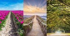 Válassz egy ösvényt a 3 közül, és mi eláruljuk, hogy milyen lesz számodra ez a nyár! Tej, Vineyard, Outdoor, Outdoors, Vine Yard, Vineyard Vines, Outdoor Games, The Great Outdoors
