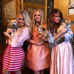 LAVIEENROSE had an amazing #photoshoot #day with these #girls #chihuahualovers #tutuchic #fun #justyentl #LaVieEnRose