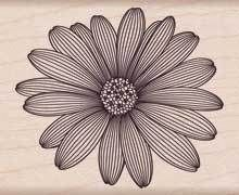 Etched Daisy - Rubber Stamp