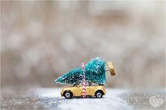 A Very Mini Cooper Christmas Mini Driver, Mini Lifestyle, Mini Countryman, Mini One, Mini Coopers, Christmas Time, Xmas, First Car, Love Car