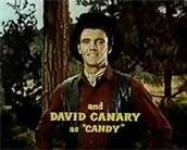 David Canary on Bonanza. He took the place of Adam (who NEEDED to go!)