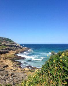 Bondi  Bronte  #coastalwalk #sydney #bondi #nsw #sea #waves #surf #perfection #blueblueblue #summer #bonditobronte #tamarama #cove #rocks #geology #beauty #travel #trek #exploring #runningroute #glorious #luckybum #mybackgarden #ocean #flowers by flynna26 http://ift.tt/1KBxVYg