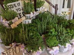 Le Bomboniere aromatiche . www.weddinglafioreria.com