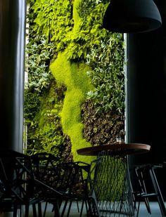 building-vertical-gardens-mr.green5