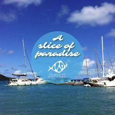 #LeverickBayResort is within your reach. #BVI #caribbean #paradise #favorite #islandlife #adventure #happy #family