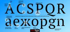 PT Serif Pro font – a serif font coordinated for use with PT Sans Pro