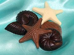 Seashell and starfish-shaped chocolates for a beach-themed wedding. Trufflehound's Fine Chocolates.