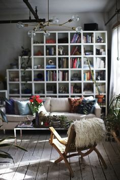 that bookcase tho