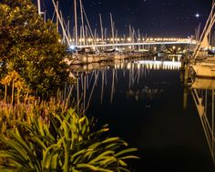 I'm supposed to be catching a shot of the beautiful Viaduct in Auckland City at night with a starry sky and a clear water. But I was so lucky because a Fish just came Into the picture, jumped and just before it went back into the water, I was able to catch at least its fin