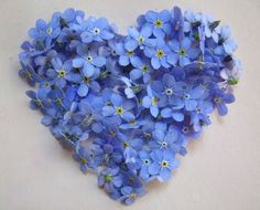 forget me not heart - look closely - there are faces in the flowers! I Love Heart, Happy Heart, No Rain, Forget Me Not, Love Blue, Love Symbols, Photo Craft, Heart Art, My Favorite Color
