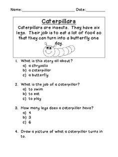 READING COMPREHENSION PASSAGES - TeachersPayTeachers.com