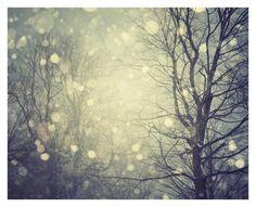 A Winters Tale Kunstdrucke von Irene Suchocki bei AllPosters.de