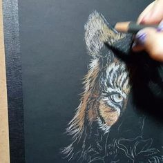 Bestseller books online lifelike drawing in colored pencil with lee working on a tiger on black paper in colored pencil tonight coloredpencil fandeluxe Image collections
