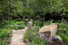 GOLD MEDAL: Another view of the M&G Garden.
