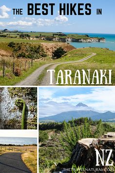 The Travel Natural | Taranaki's best day hikes for outdoorsy freaks. Some of the best hikes in New Zealand's North Island are found here