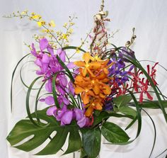 Elegant and Colourful Mix of Singaporean Orchids, accented with OPH Grass. $50.00  www.dutchmillflowershop.com Orchids, Grass, Valentines Day, Elegant, Color, Valentines Diy, Classy, Colour, Herb