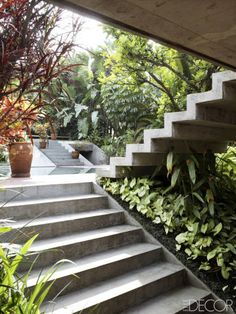 HOUSE TOUR: An Architect's Modern Retreat In Brazil   Steps lead to the bunker-style lower studio; the plantings include syngoniums, banana trees, and native fruta de pombo.