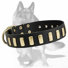 #Gorgeous Leather #German #Shepherd Collar with Vertical Gold-Like Plates $34.90 #Smooth #Attractive #Plates are Carefully Secured with #High #Quality #Rivets to Never Fall Away. #Walking in #beauty is an easy trial if your dog wears this #exquisite leather #dog #collar.