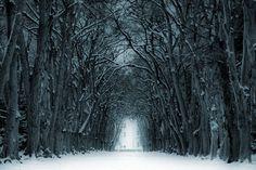 Winter trip by *tomsumartin on deviantART