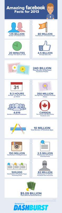 20 Amazing Facebook Stats 2013 from DashBurst