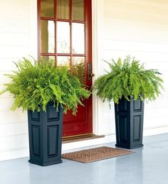 Front porch planters on pinterest front porch flowers Plants next to front door