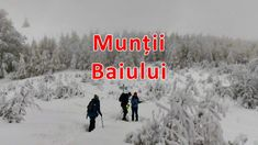 Baiului | Iarna pe munte, drumeție de o zi prin zapada Hiking, Snow, Travel, Outdoor, Walks, Voyage, Outdoors, Viajes, Traveling