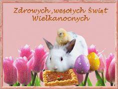 Wielkanoc: Animowane kartki wielkanocne z życzeniami Rabbit, Easter, Celebrations, Holidays, Moving Pictures, Bunny, Rabbits, Holidays Events, Bunnies