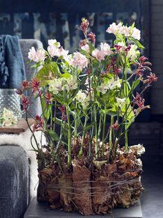Inspiration de bouquets composés avec des alstroemerias