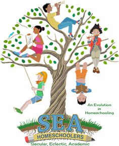 Find local support with these secular homeschool support groups. Please note that these groups are not affiliated with SEA. Middle School History, Middle School Writing, Art Of Problem Solving, Books For Tweens, Online High School, Charlotte Mason, Project Based Learning, Elementary Science, Stargazing