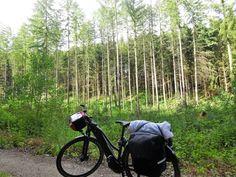 Juli_e_cycle à travers les forêts paisibles luxembourgeoises... #velo #bicyclette #veloelectrique #ebike #vae #tourdefrance #cyclingtour #cyclotourisme #RestartCycleTourism #luxembourg #voieverte #foret #cyclingtour #juli_e_cycle #velafrica
