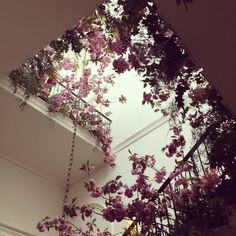 Scarlet and Violet for Jo Malone London, floral staircase
