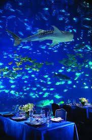Resultado de imagen para under the sea wedding