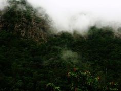 Misty hills of Silent valley national park Beautiful Places in India that are too dangerous @chalbatohi