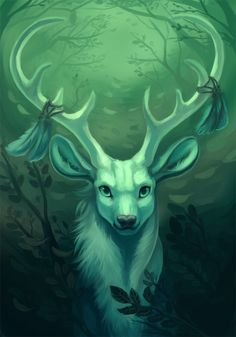 the-forest-of-the-faun: White Stag