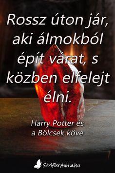 Harry Potter Movies, Draco Malfoy, Hogwarts, Humor, Motivation, Masters, My Books, Quotes, Master's Degree