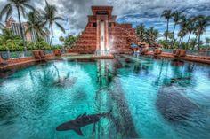 Editar fondos de pantalla para descargar Nassau, Las Bahamas, Palms, piscina Fondos de pantalla gratis — imagen №409907
