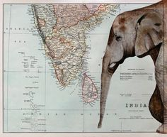 Elephant And Map Of India Print