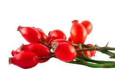 Benefits of Rosehip oil | Nourished Life