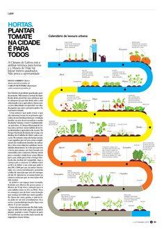 Hortas: Plantar tomate na cidade é para todos. Prémios ÑH9, Menção.