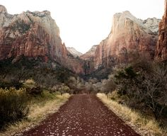 Zion. The Narrows & The Subway Canyon.   2 of the greatest adventure hikes of my life.  Both in Zion Nat'l Park.
