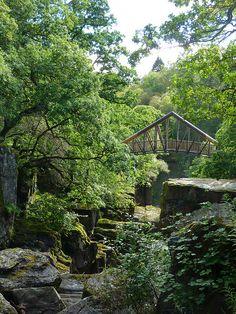 Bridge over Bracklinn Falls, Scotland (by d^_e^).