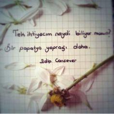 Şiir Edip Cansever
