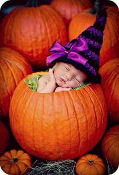 Falling asleep in a pumpkin...