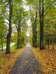 Sharon, Vermont. Lane to the birth place of Joseph Smith and Visitors' Center.