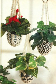 Plant Hangers/Decor/Crochet Pattern Instructions