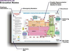 emergency exit plan requirements - Google Search Safety Pictures, List Of Jobs, Some Text, Safety Glass, Custom Wedding Invitations, Health And Safety, New Job, Templates, Map