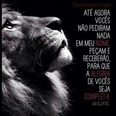 Leão de Judá. #cristo #joão16:24 #oração #nomedosnomes