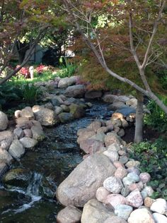 My favorite spot in the garden...this little winding waterfall filling the pond